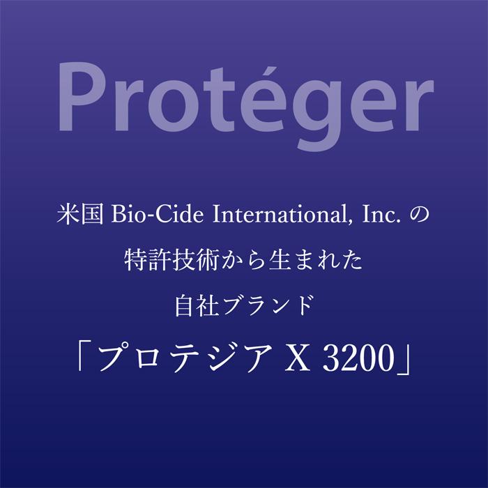 プロテジアX3200画像